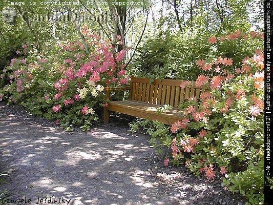 Bild Gartenbank Teak Holz Metall Oder Wetterfeste Gartenbank