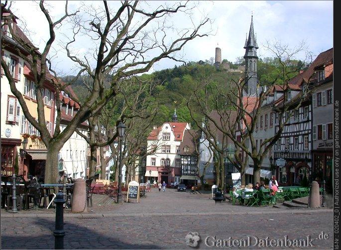 bild weinheim fr hling foto marktplatz von weinheim an der bergstra e. Black Bedroom Furniture Sets. Home Design Ideas